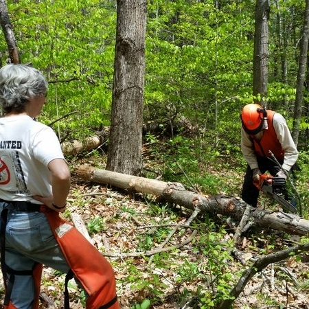 Chainsaw safety and maintenance workshop.