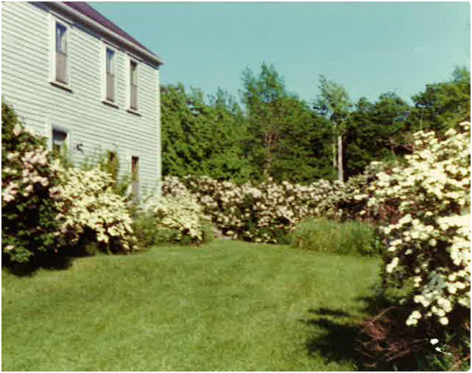 A photo by Mrs. Burke of her home and garden