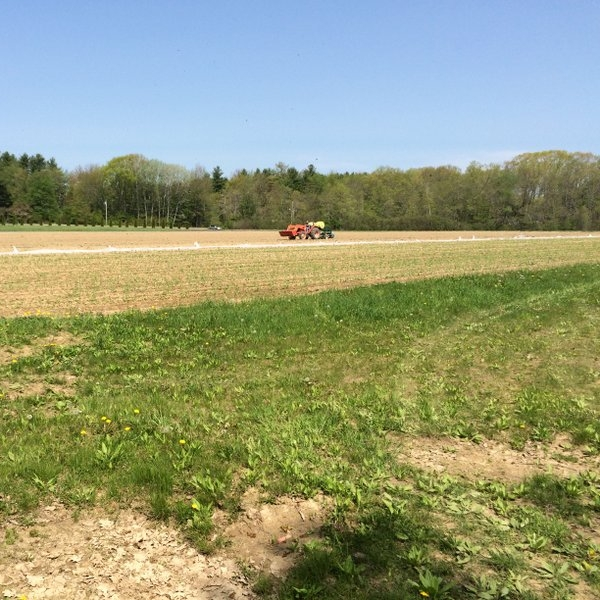 The conserved fields of Fairwinds Farm in Bowdoinham