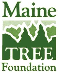 Maine TREE Foundation.jpg