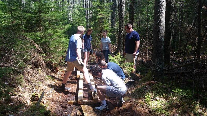 We need your help building bog bridges!