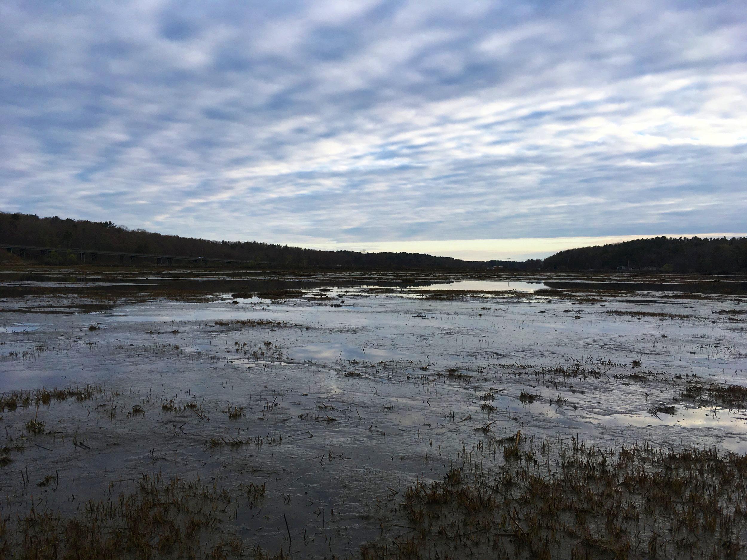 The mudflats at dawn.