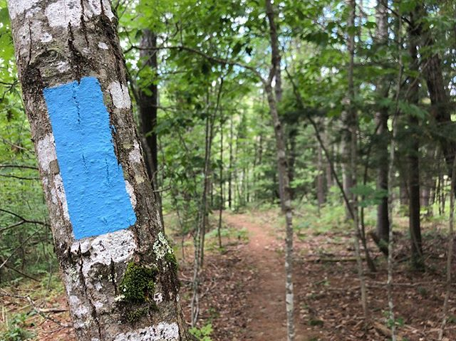 Blue blazes mark the trails along the way.