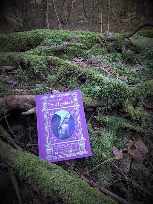 The Faerie Handbook in the wild.JPG