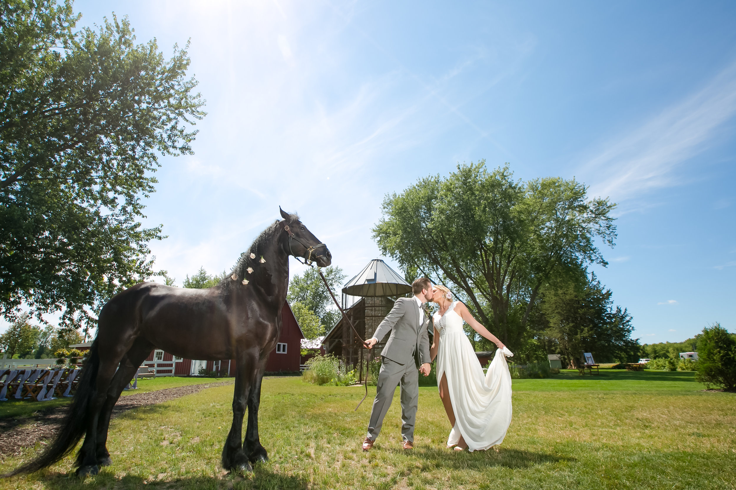 Wedding couple with a horse for added wedding decoration / decor