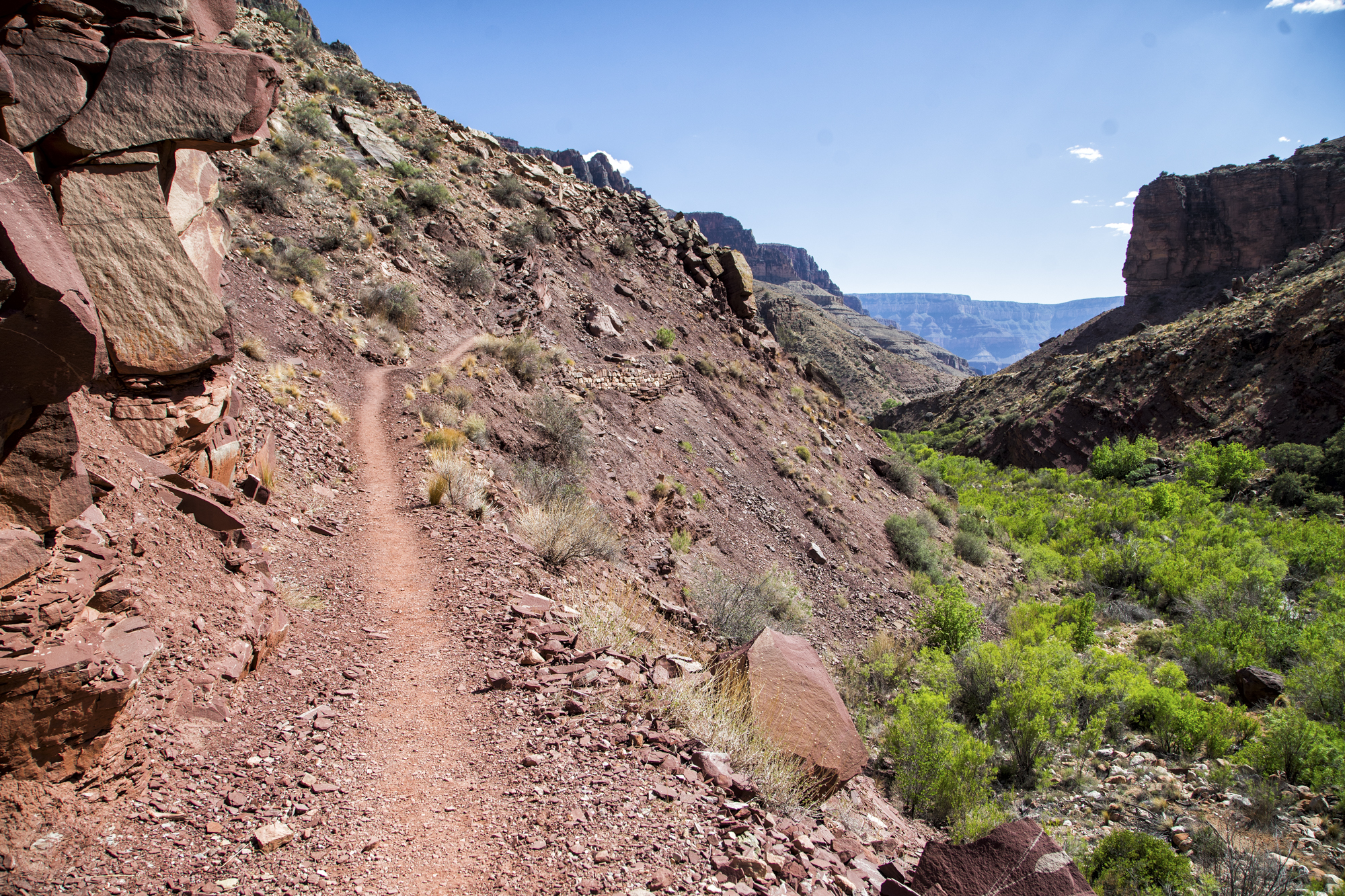 North Rim Trail Landscape.jpg