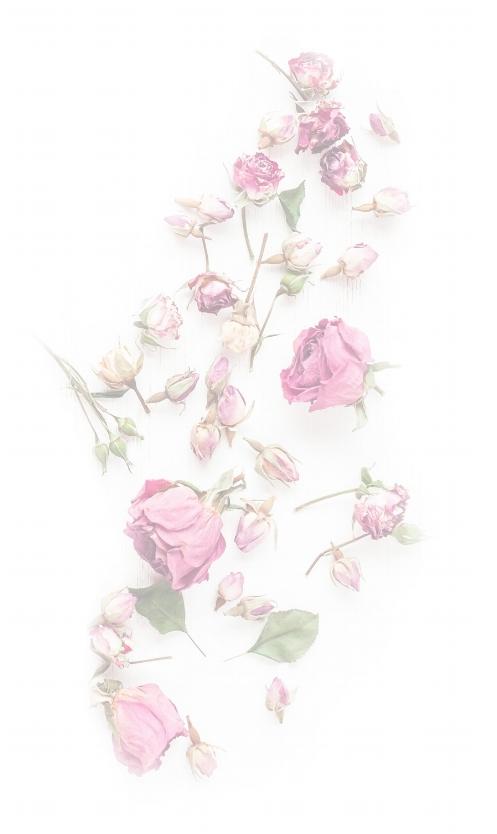 Flowers-bio-section 3.jpg
