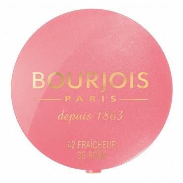 bourjois blush.jpg