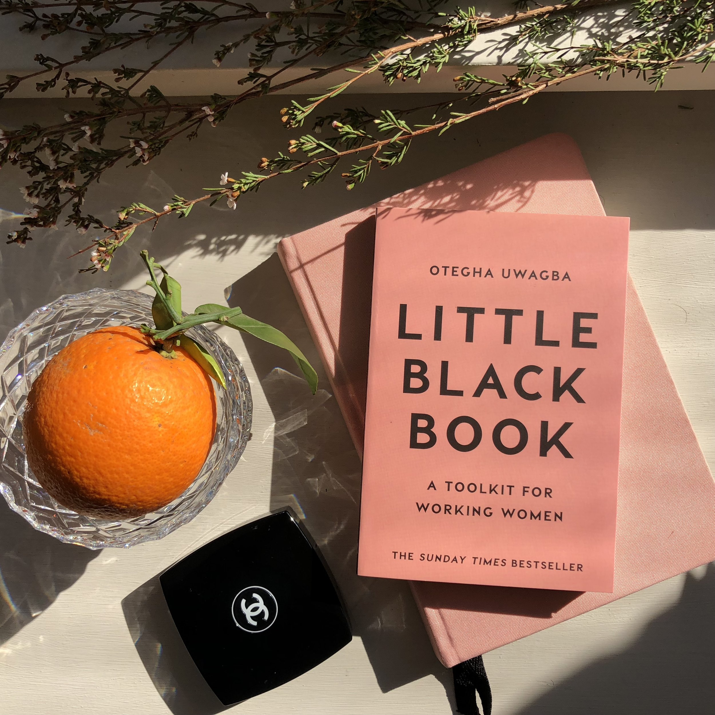 books-all-career-women-should-read-little-black-book-otegha.JPG
