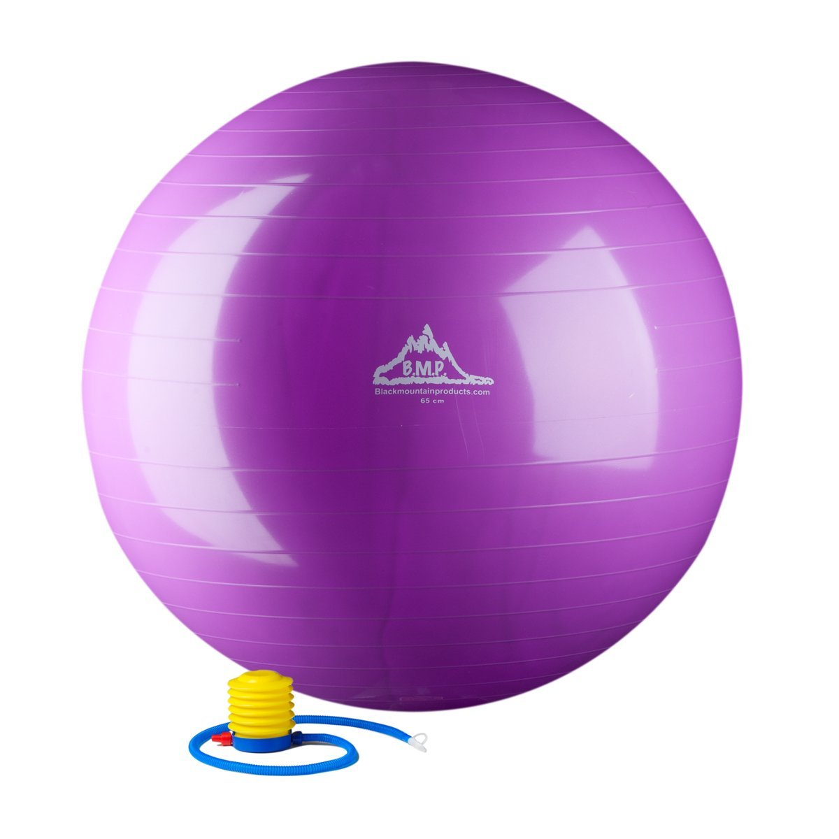 Static Strength Exercise Stability Ball with Pump -