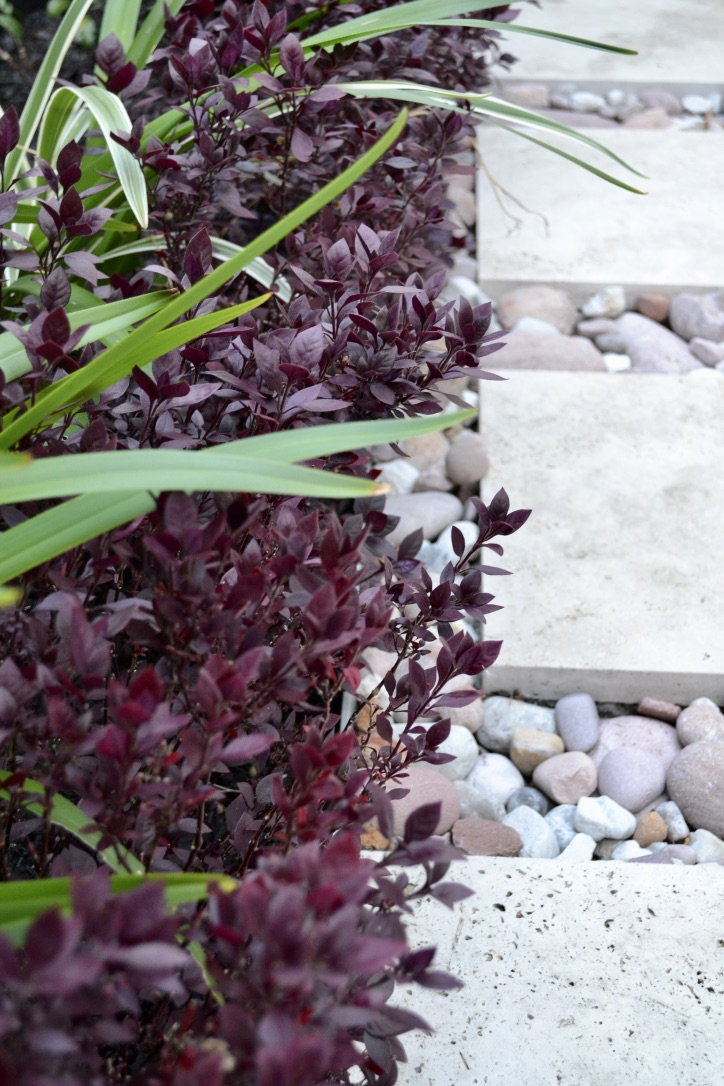 Variegated flax lily and little ruby alternanthera, create a vibrant border to this travertine and river stone pathway.