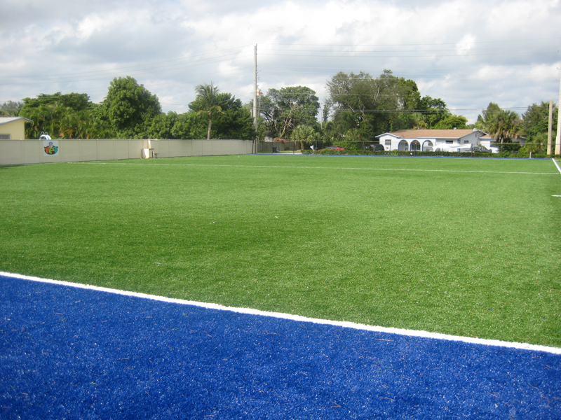 Example of the synthetic turf