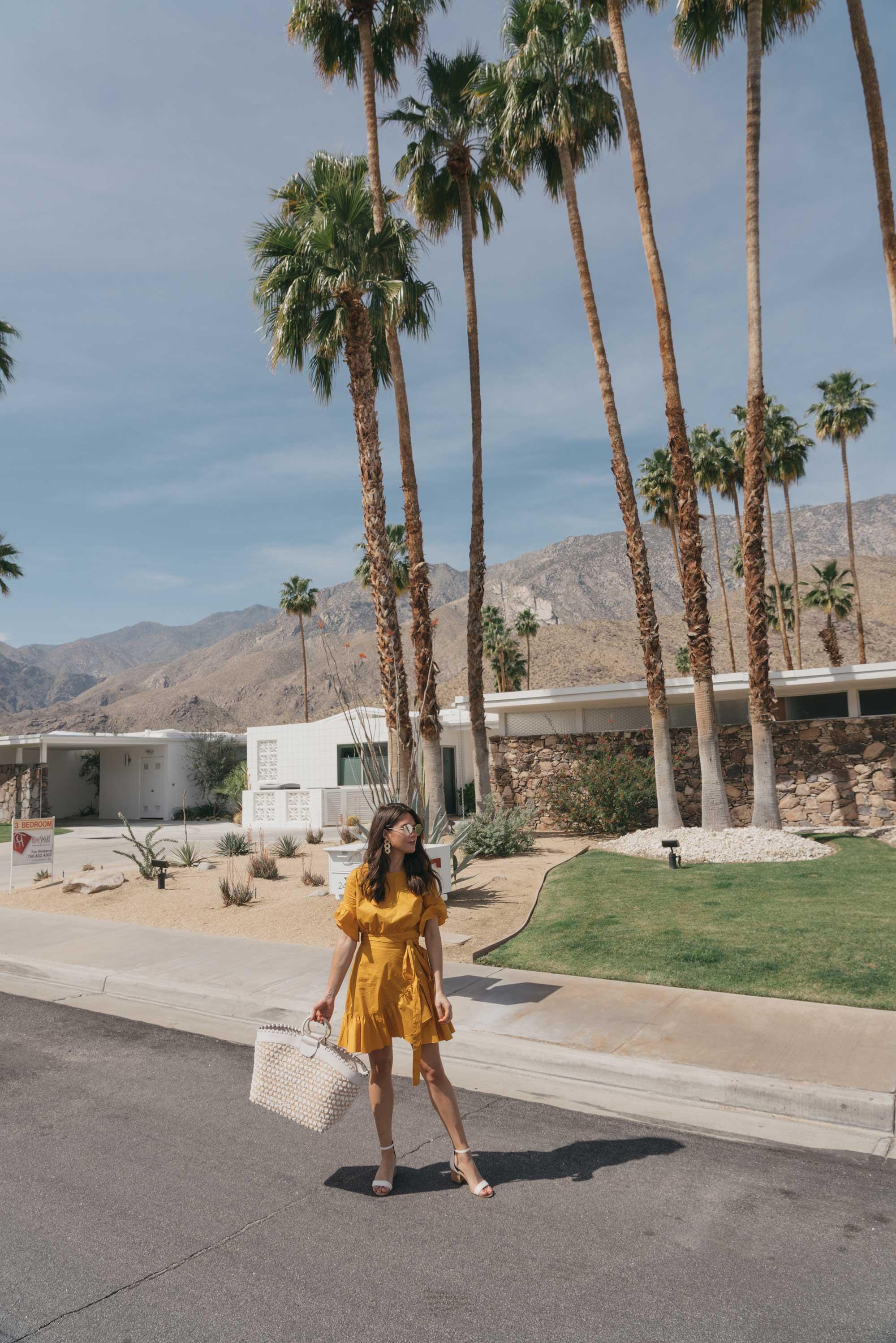 Cynthia Rowley Short sleeve cotton ruffle wrap dress Palm Springs Outfit3.jpg