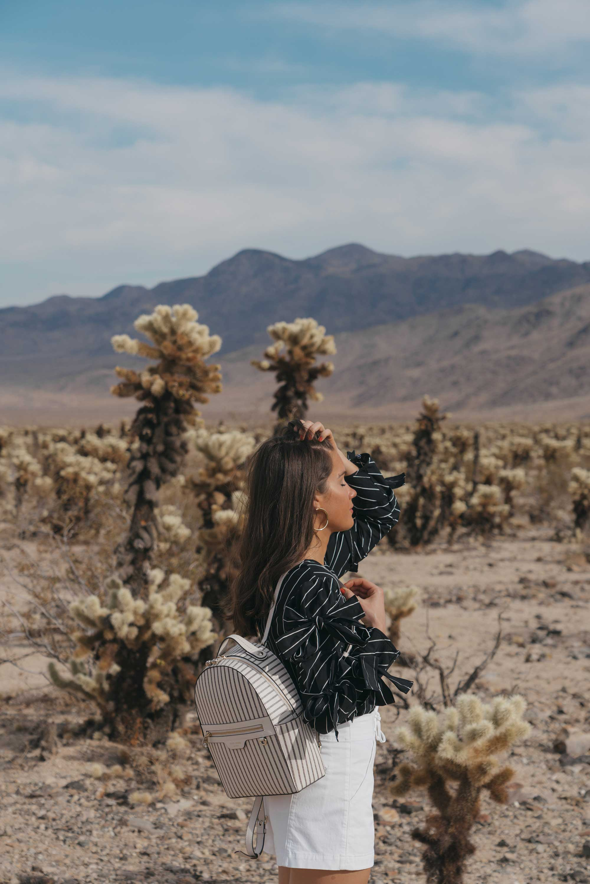Henir Bendel WEST 57TH STRIPED BACKPACK festival outfit for Coachella Cholla Cactus Garden Joshua Tree Desert14.jpg