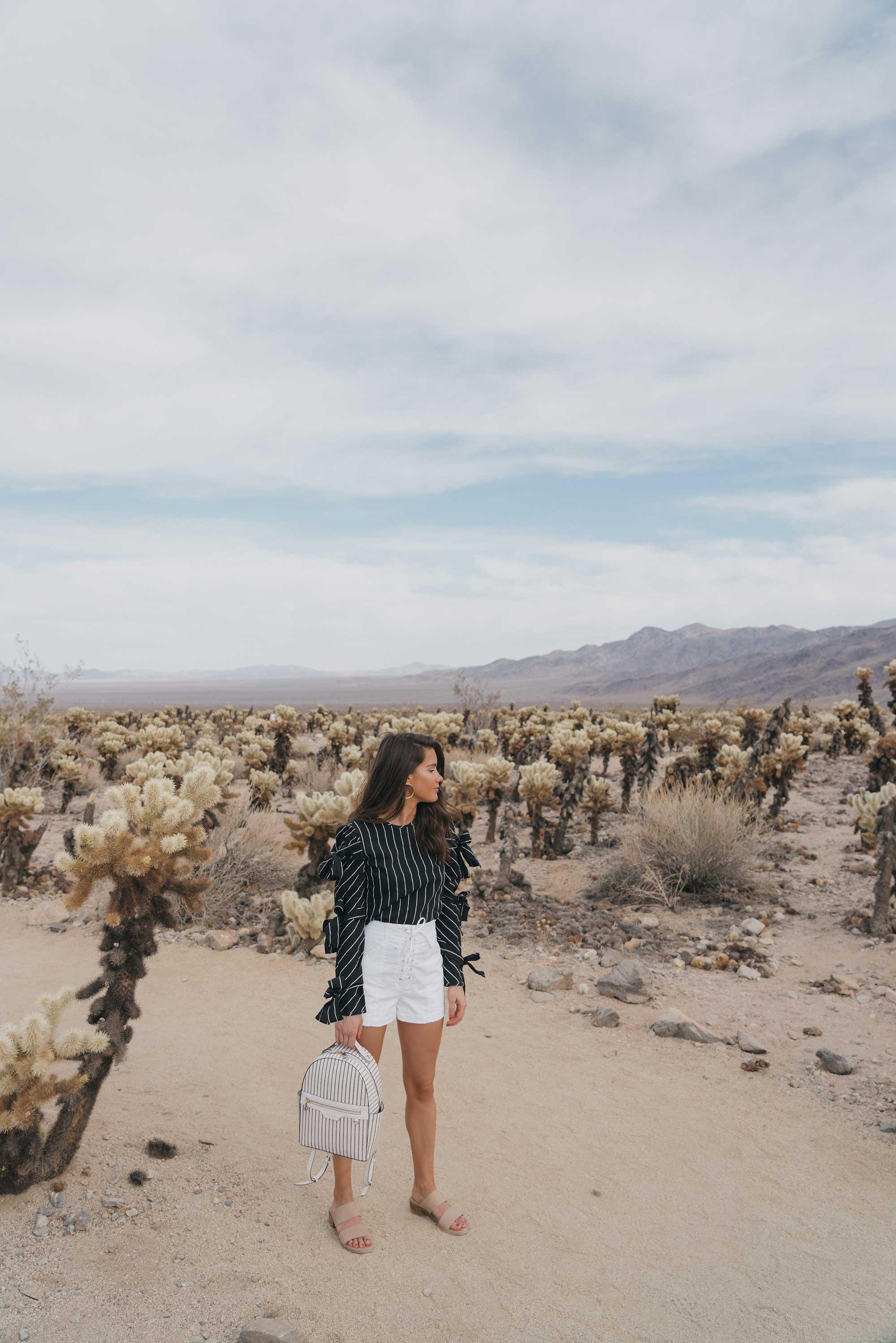Henir Bendel WEST 57TH STRIPED BACKPACK festival outfit for Coachella Cholla Cactus Garden Joshua Tree Desert13.jpg