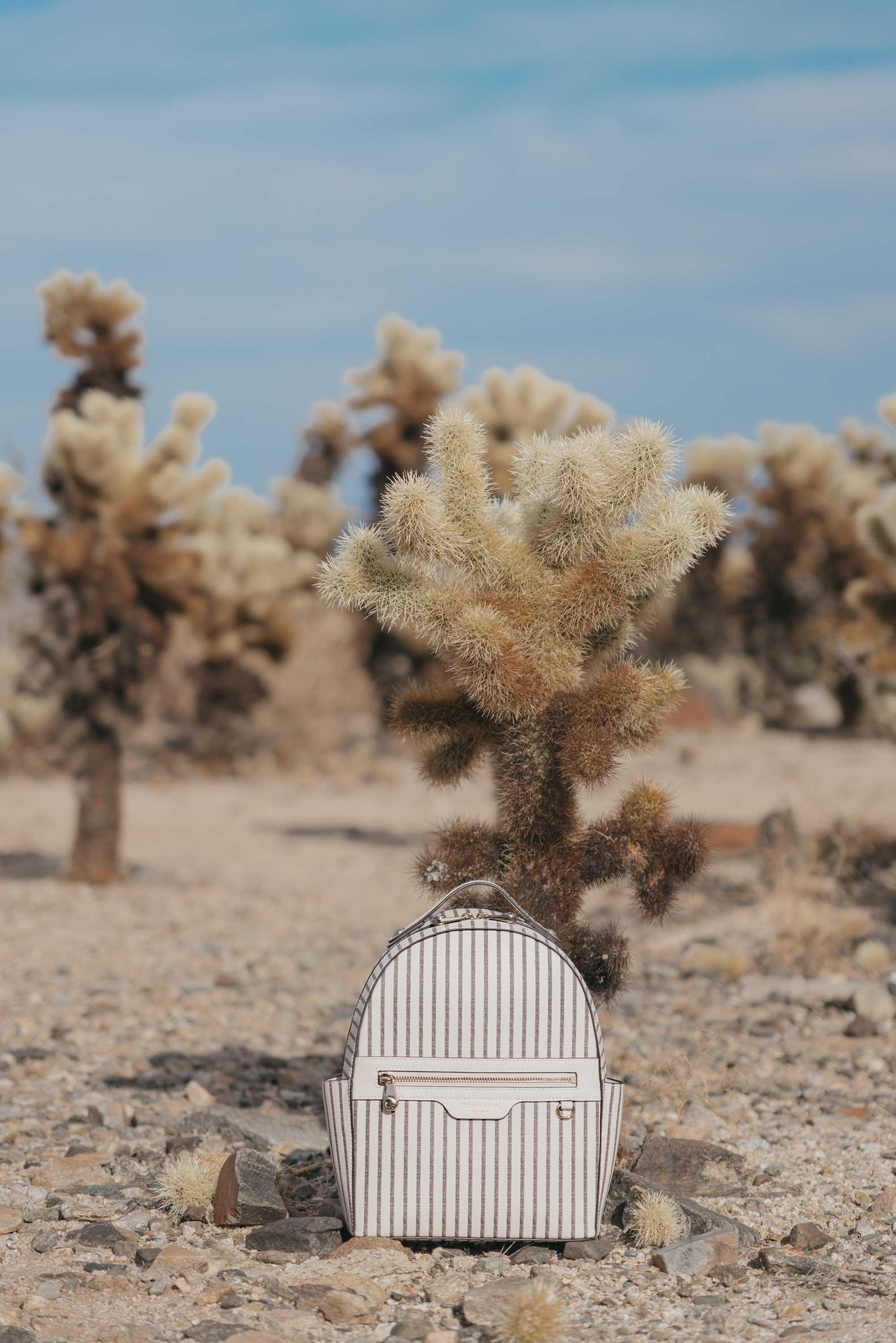 Henir Bendel WEST 57TH STRIPED BACKPACK festival outfit for Coachella Cholla Cactus Garden Joshua Tree Desert18.jpg