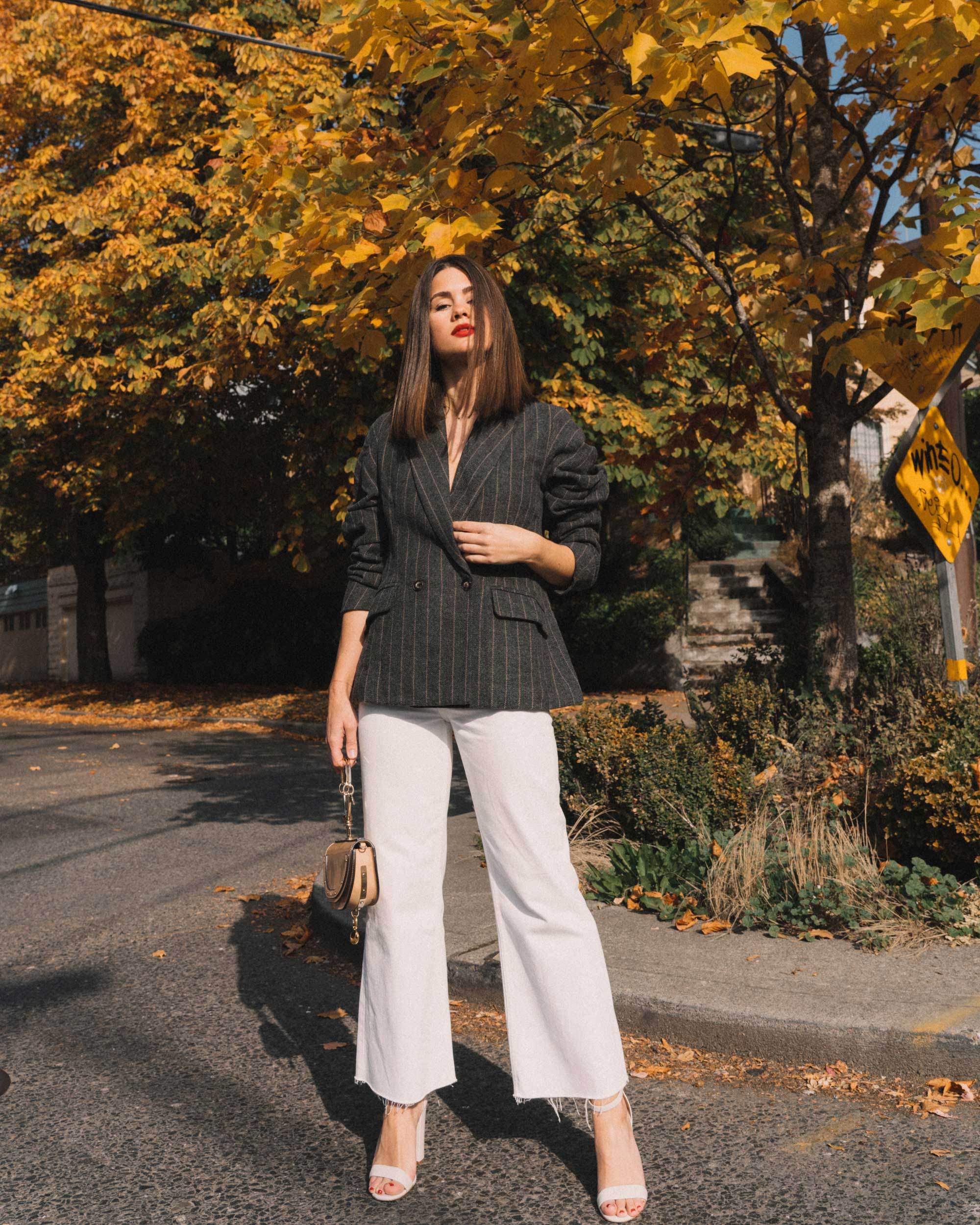 ASTR The Label Arden Charcoal Brown Stripe Gathered Puff Sleeve Blazer, winter white pants, cool fall outfit ideas,4.jpg