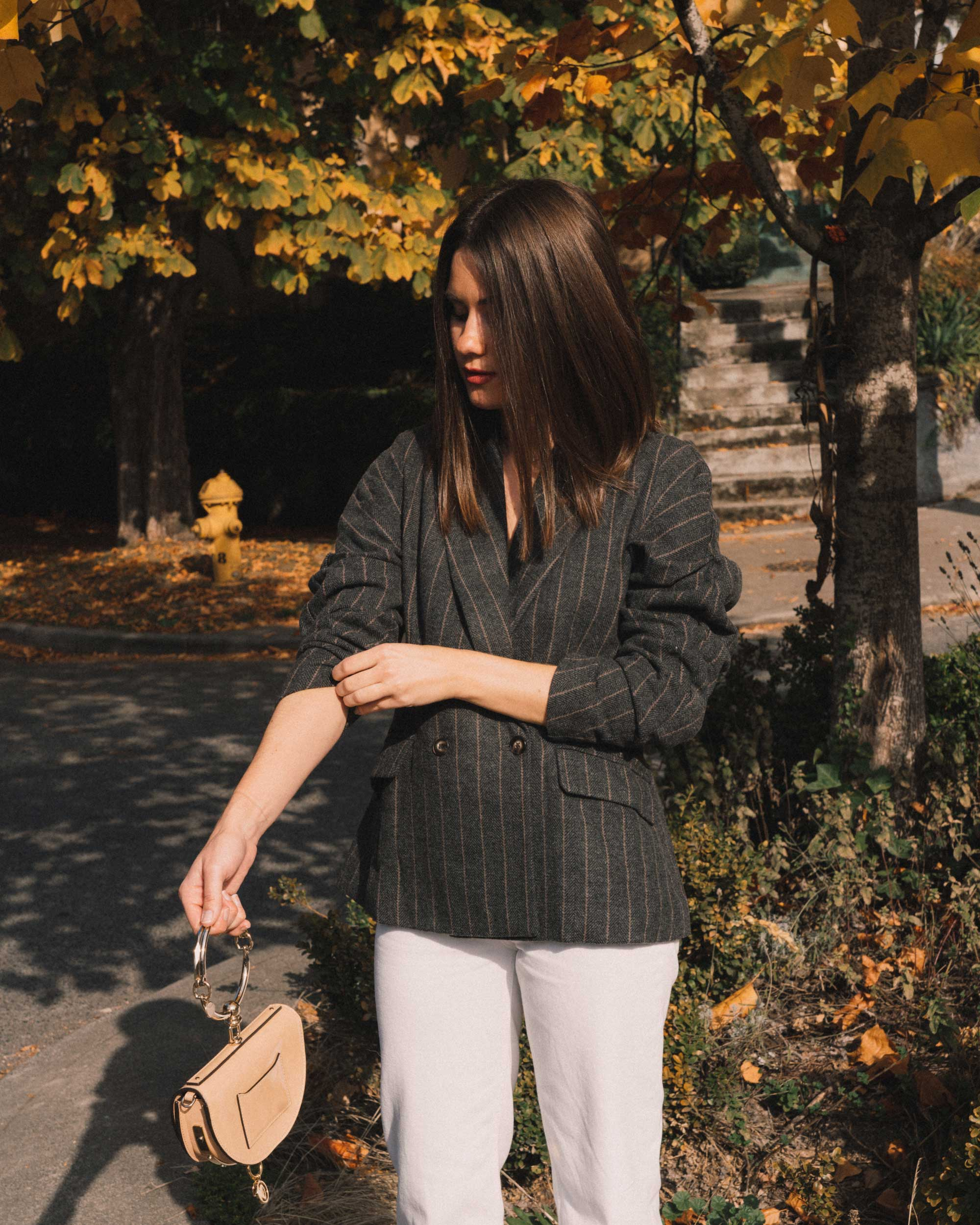 ASTR The Label Arden Charcoal Brown Stripe Gathered Puff Sleeve Blazer, winter white pants, cool fall outfit ideas,12.jpg
