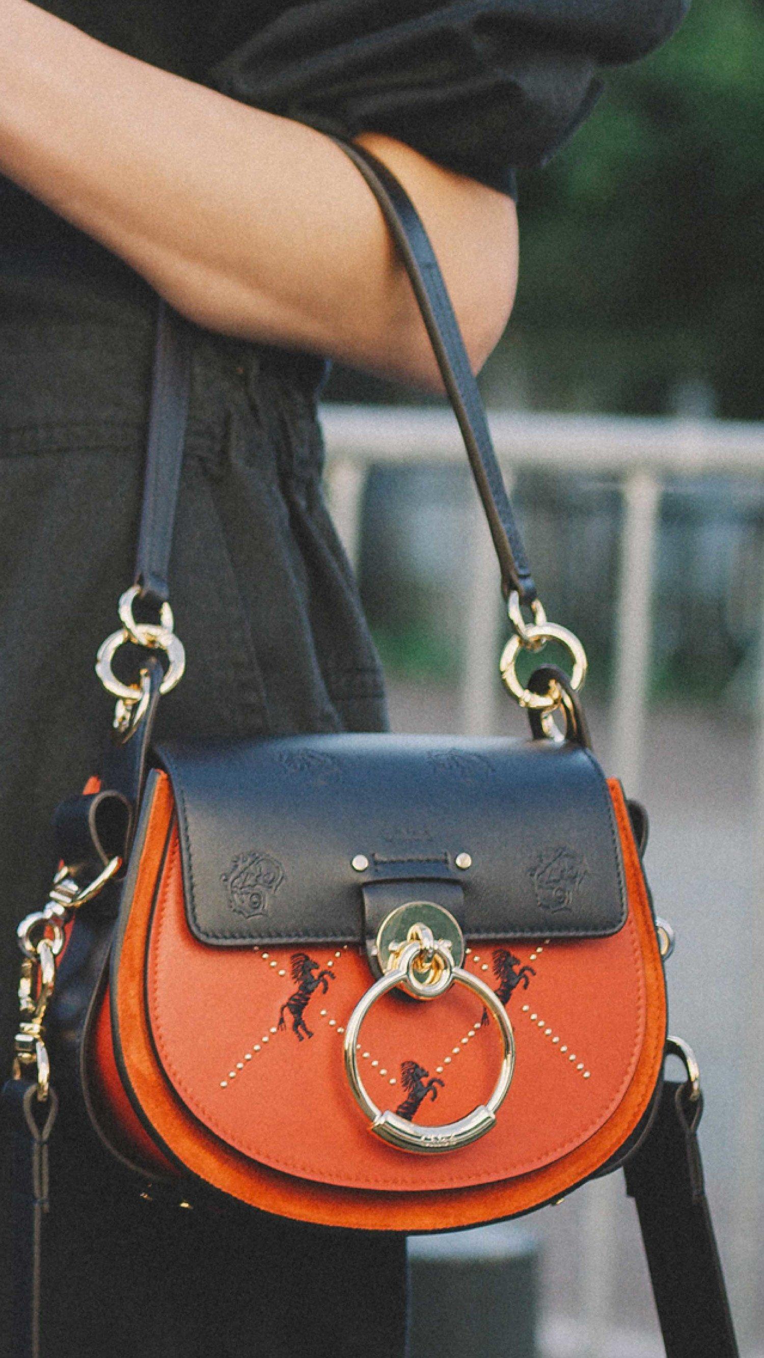 12 Best Chloe Bags Of Fashion Week Sarah Christine