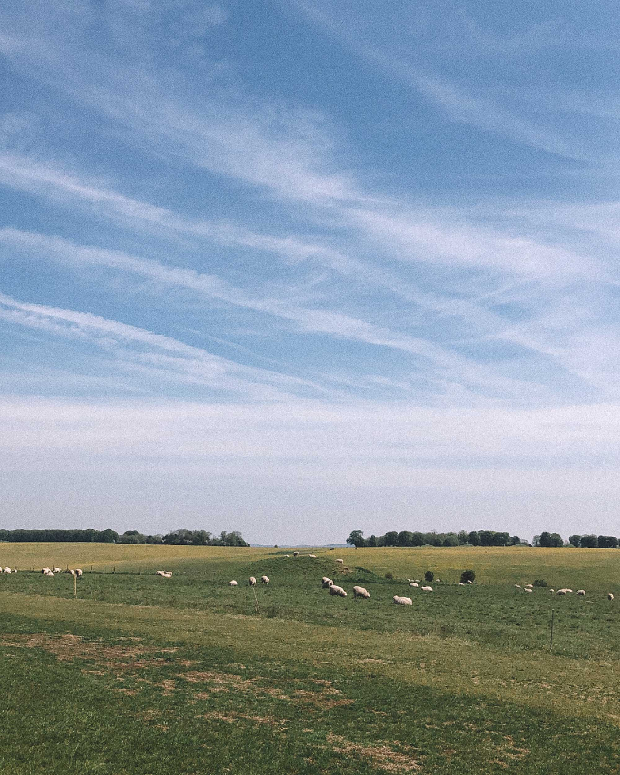 english countryside during spring3.jpg