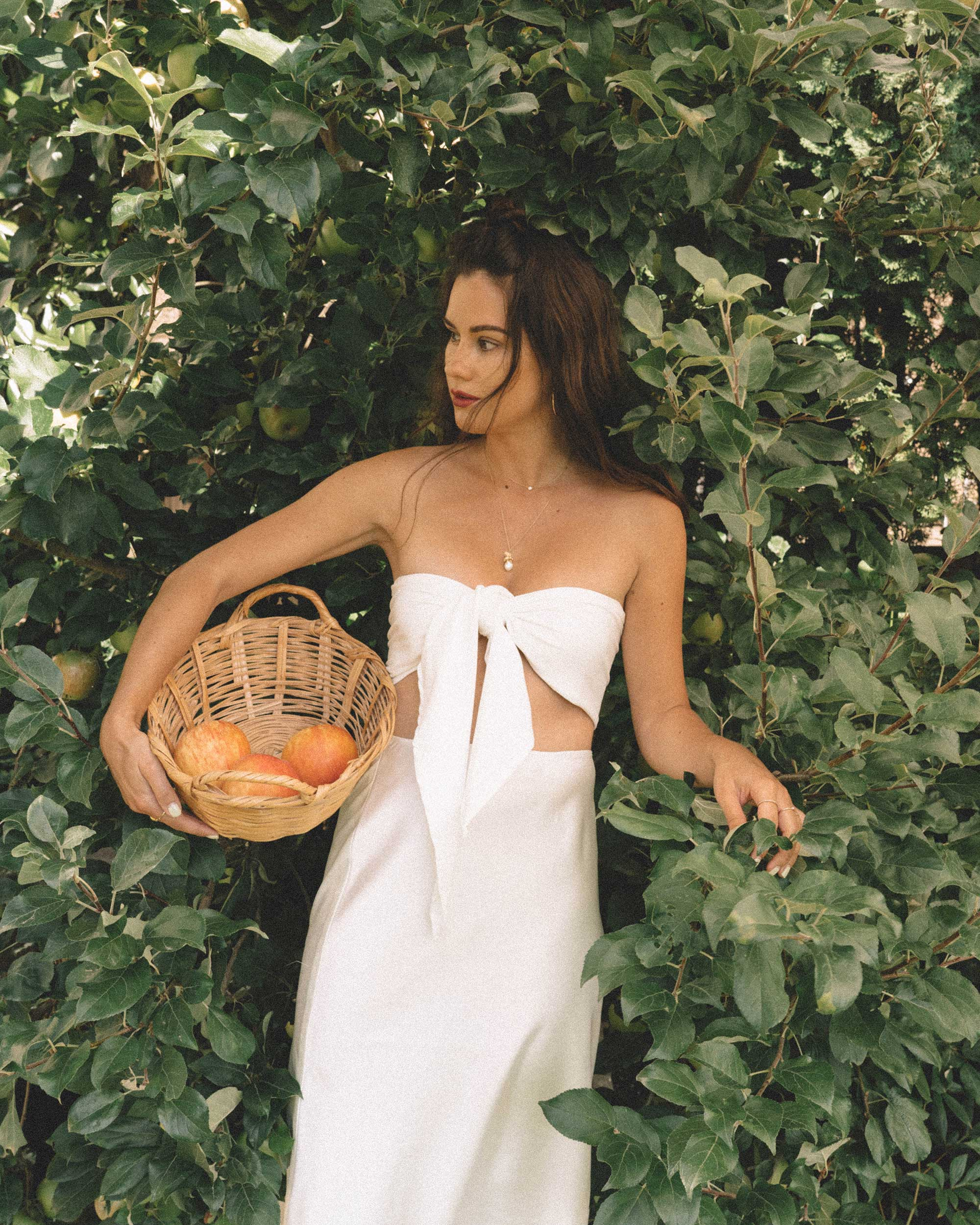 Sarah Butler of Sarah Styles Seattle apple picking in Bow Tie Bandeau Crop Tube Top and Topshop A-Line Midi Skirt at Seattle Summer Picnic  | @sarahchristine -7.jpg