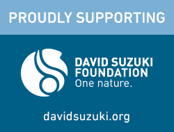 DSF_proudly-supporting_en_2.jpg