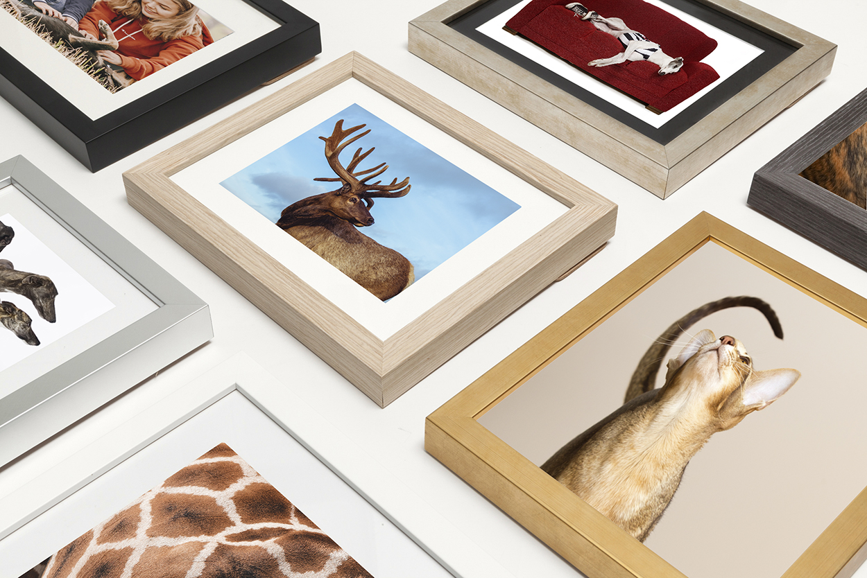 Wall Art - There's just nothing like art work ready to hang! Our range is sure to impress - mounted prints, framed matted images, floating frames…if you can imagine it, we can make it happen.From $330