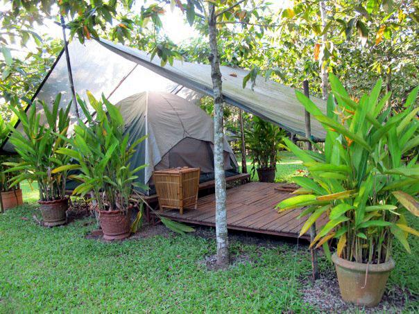 tent-copy.jpg