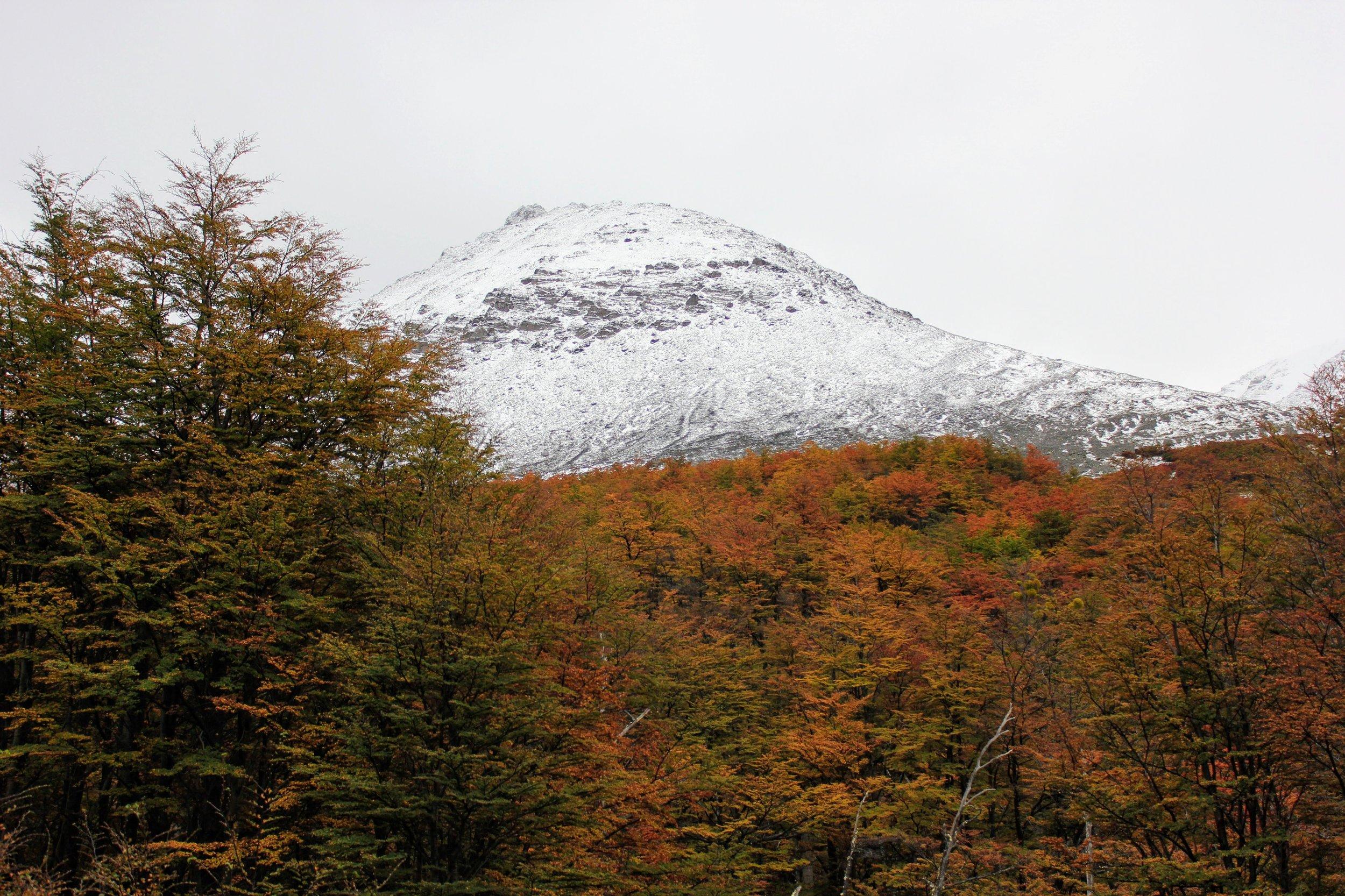 Glacier Marital