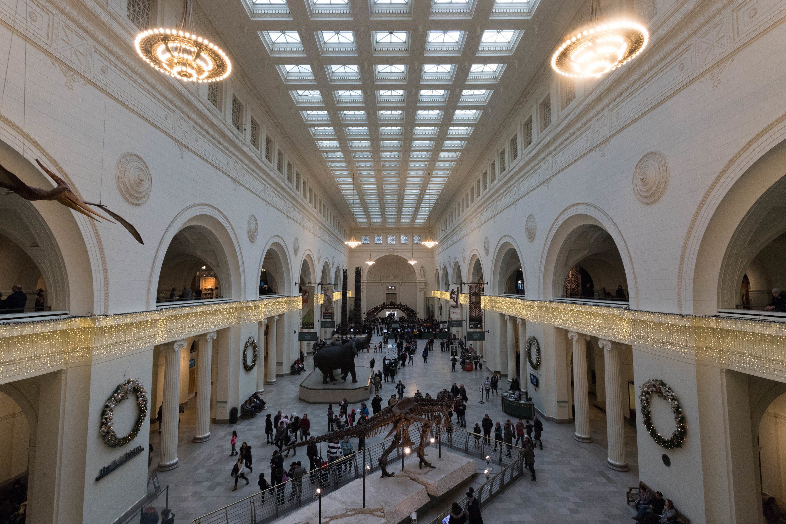 january 2, 2018  field museum - chicago, illinois