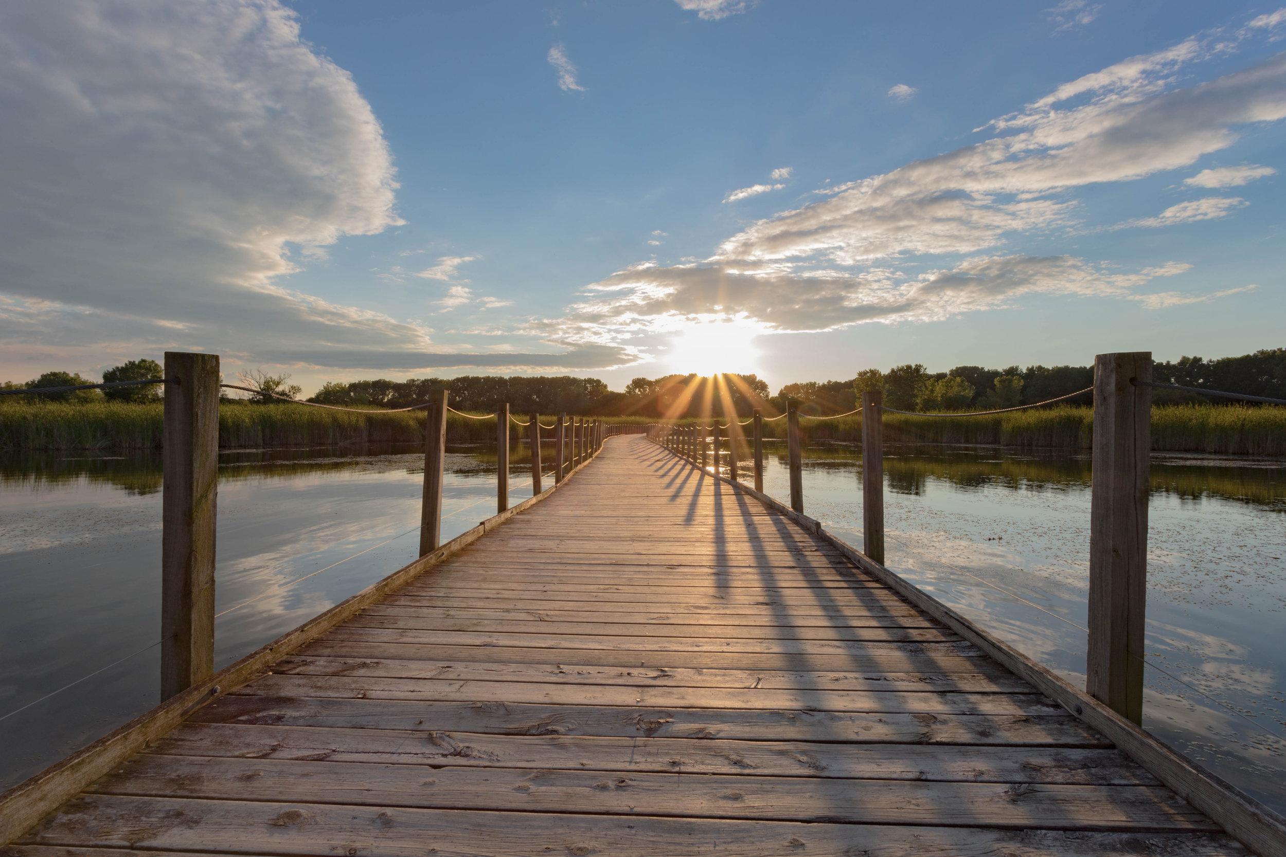 august 12, 2017  wood lake nature center - richfield, minnesota
