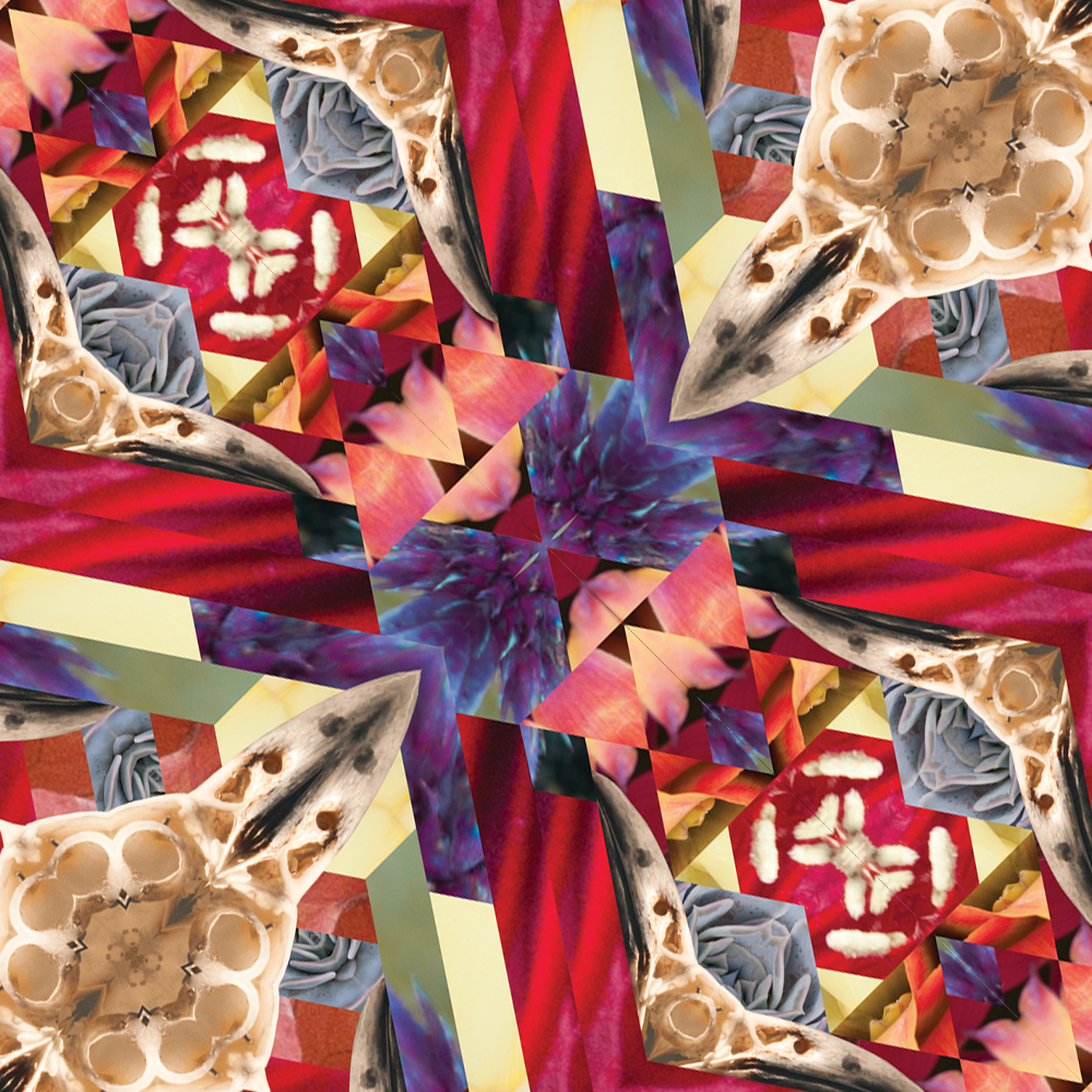 Detail of the textile pattern