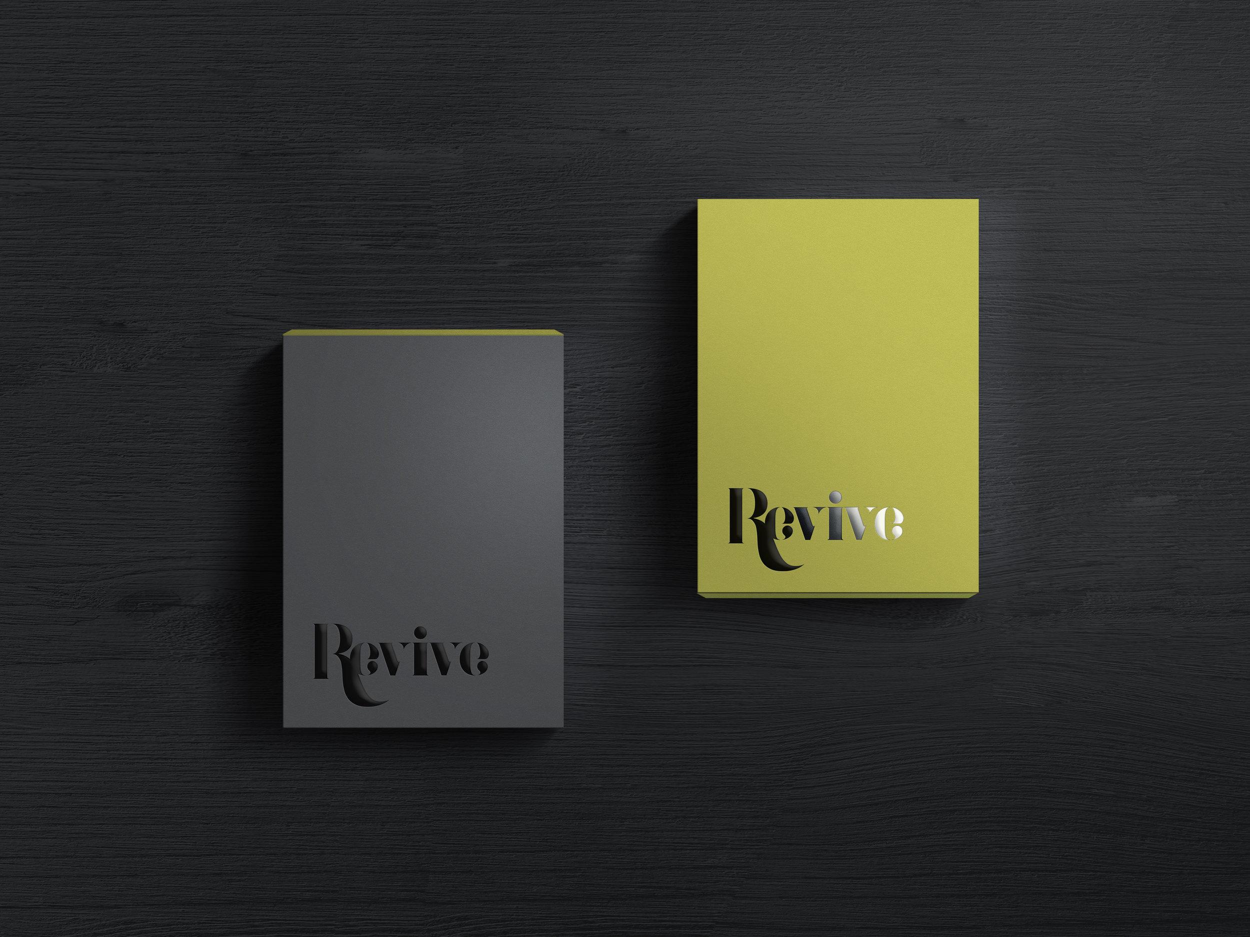 Revive.MockUp.DarkBoxDouble_1.jpg