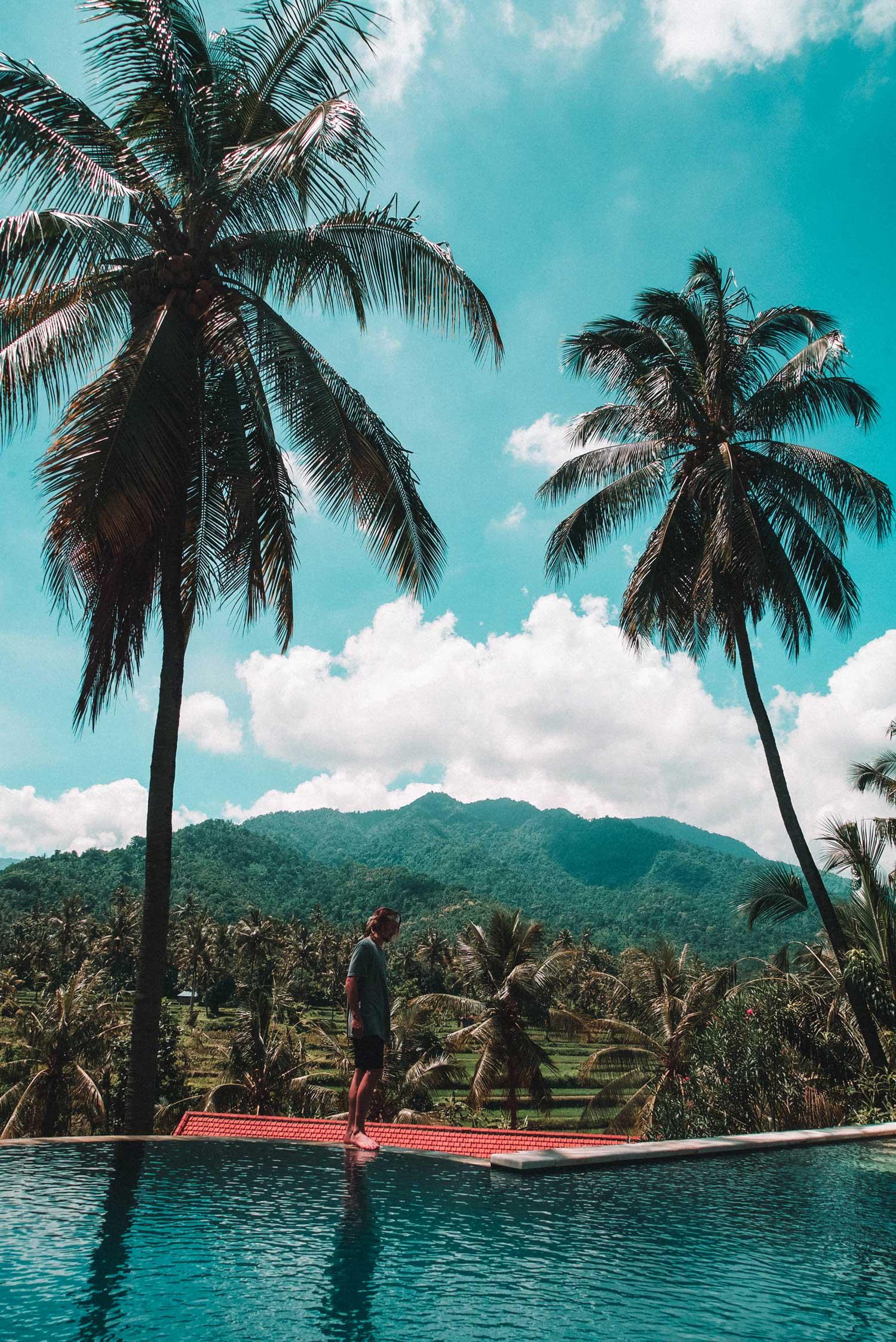 junglefallsround1-59.jpg