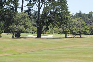 Titirangi Fairway.jpg