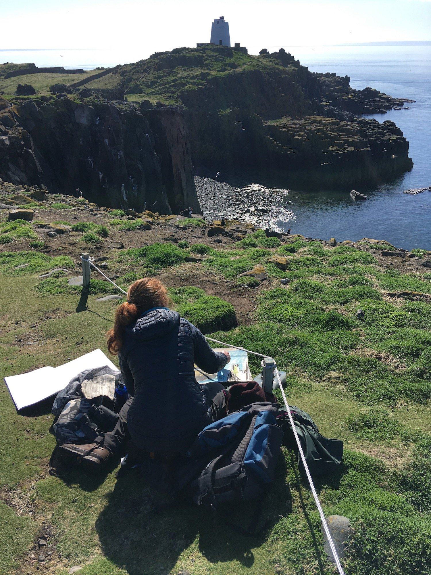 Sketching, puffins in the foreground and a guillemot colony in the distance.