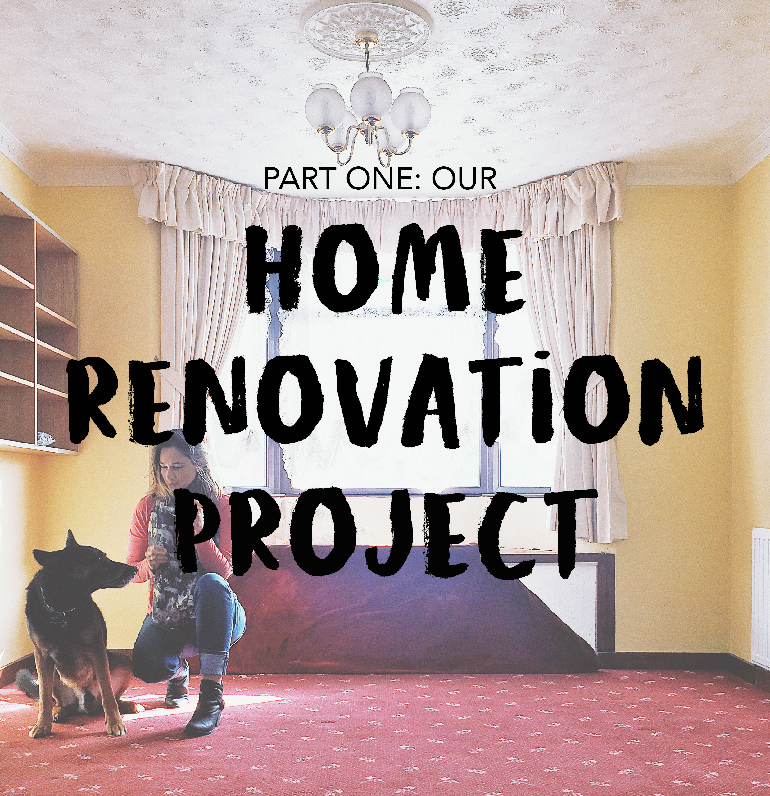 HOMERENOVATION 1.jpg