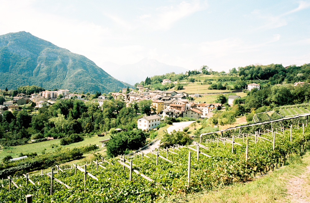20170914_CHATEAUX_ITALY_LOWRES_000038.jpg