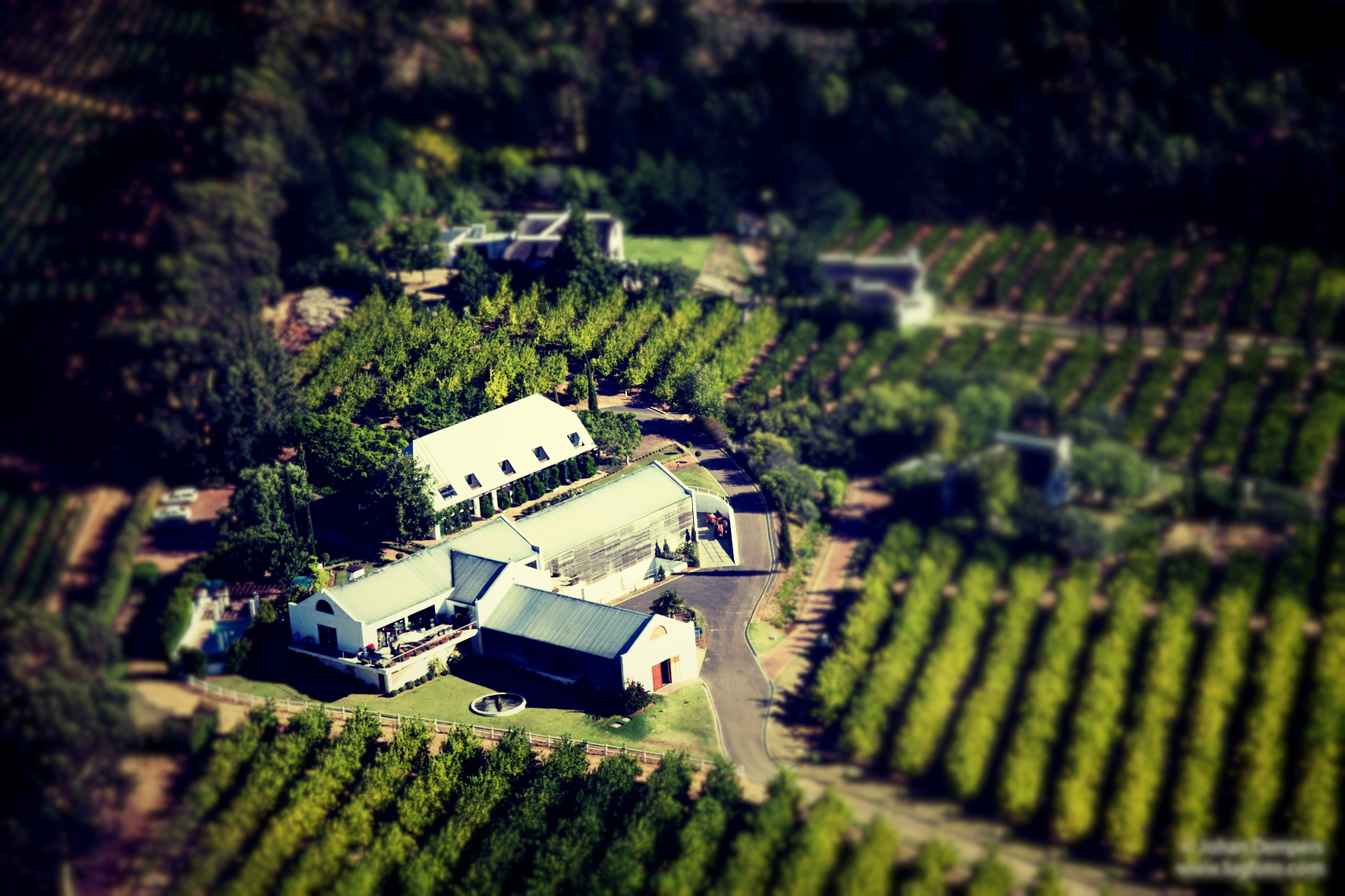 enjoy life on a winefarm - book your stay at marianne estate