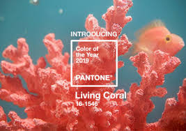 "- It is ""evocative of how coral reefs provide shelter to a diverse kaleidoscope of colour"", says Pantone"