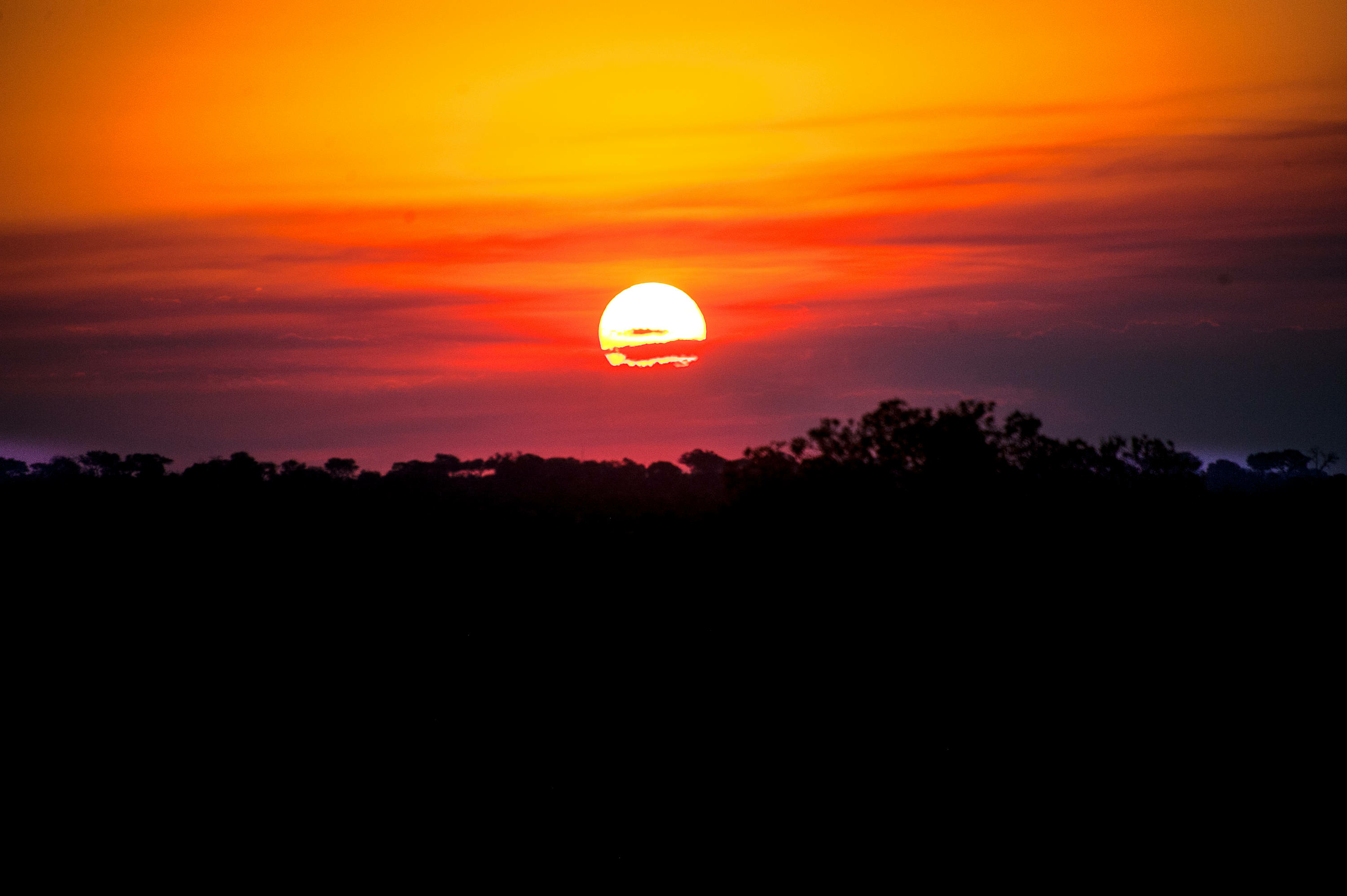 """African Sunset"" Photographed by Ron Foster"