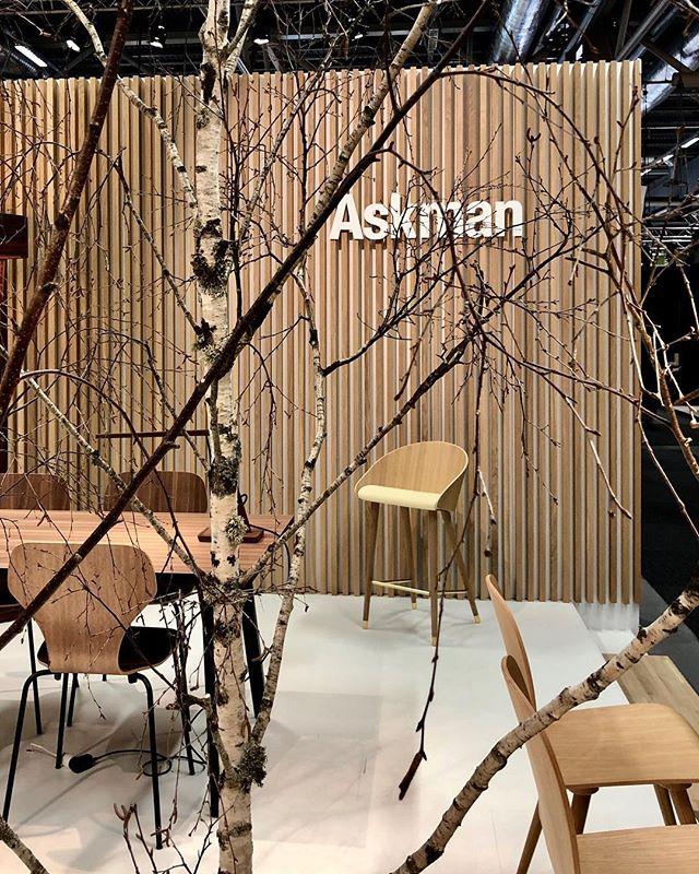 Askman Design X Evaristti ✨ #askmandesign #marcoevaristti #furnituredesign #stockholmfurniturefair #danishdesign #newcooperation #eros #barchair