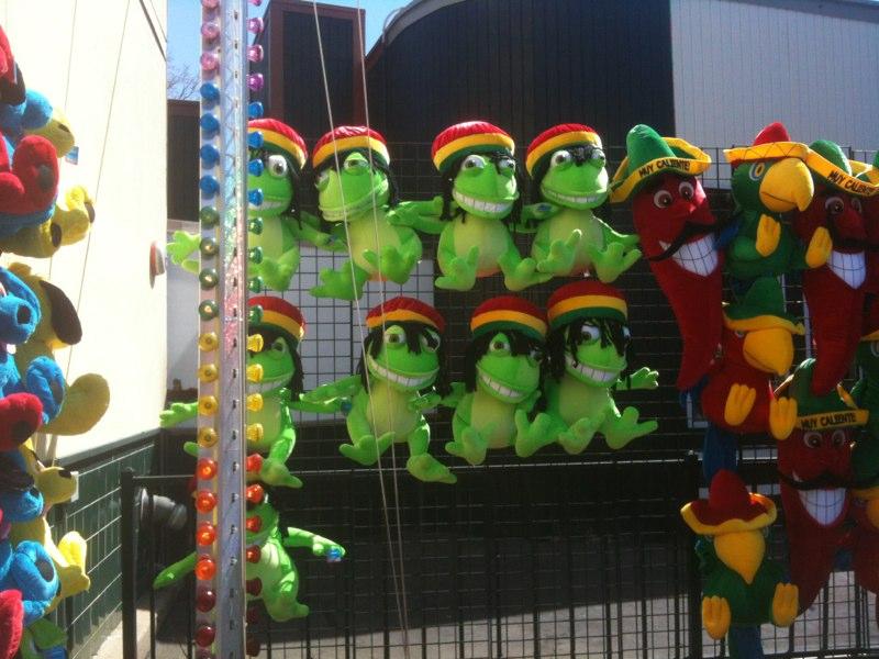 Rasta Frogs   Photo: Darren J. N. Middleton