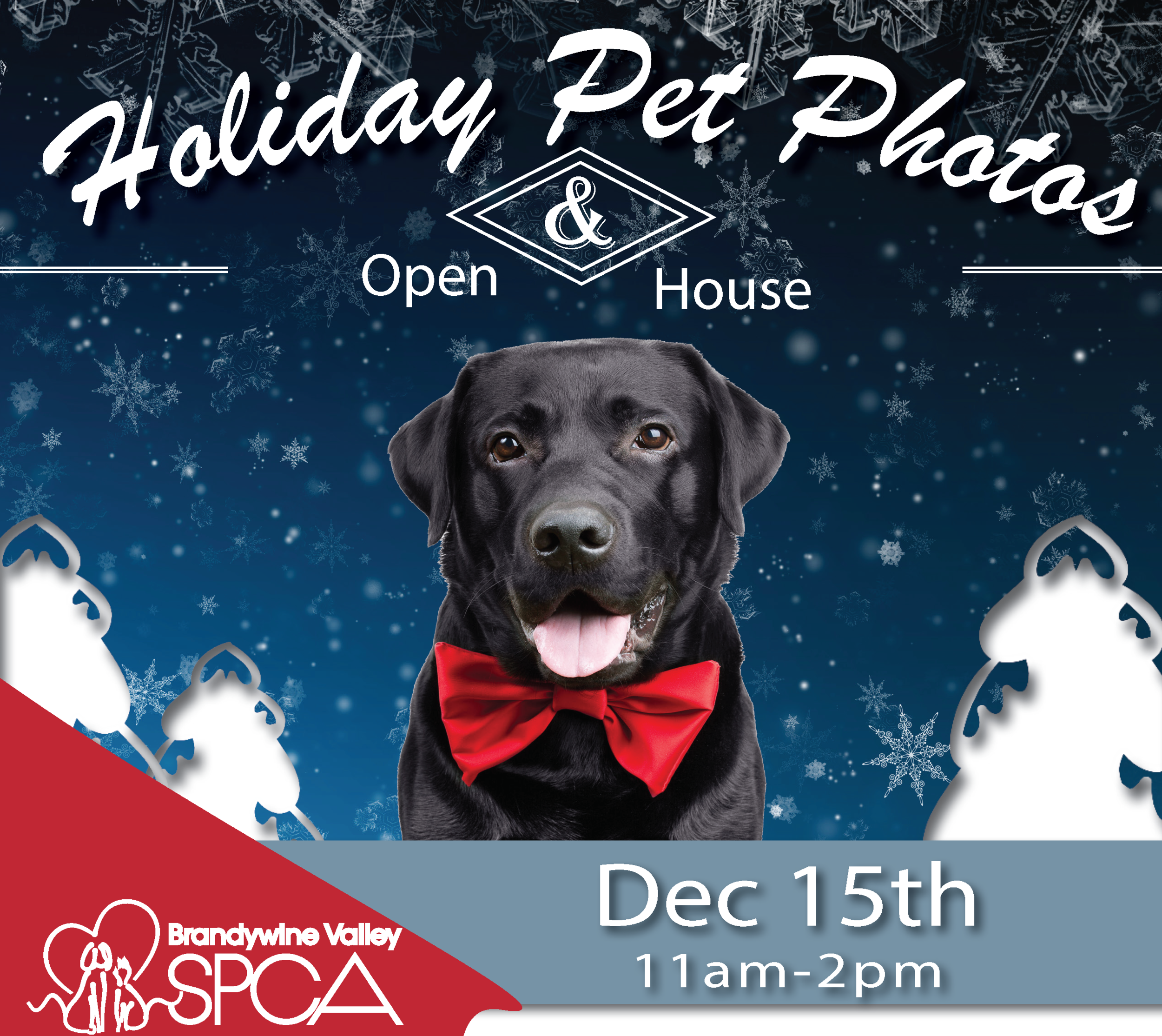 2018 Holiday Pet Photos Flyer GT.png