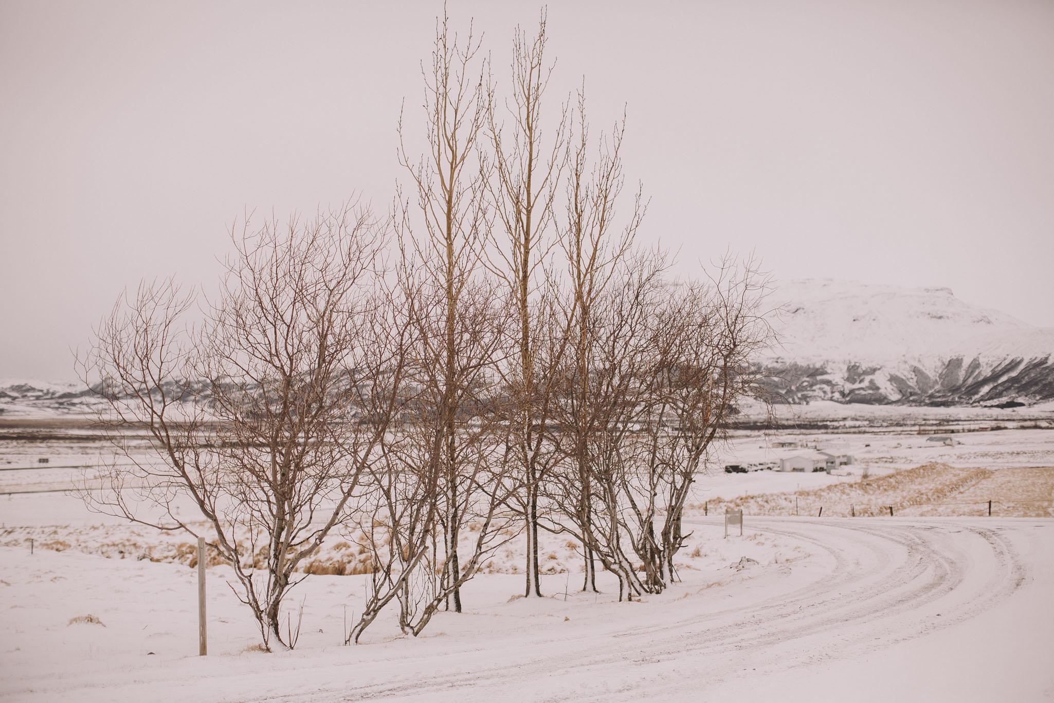 Road-trip-Islande-Iceland-Voyage-Travel-Portrait-Jérémy-Boyer-Geysir-3.jpg