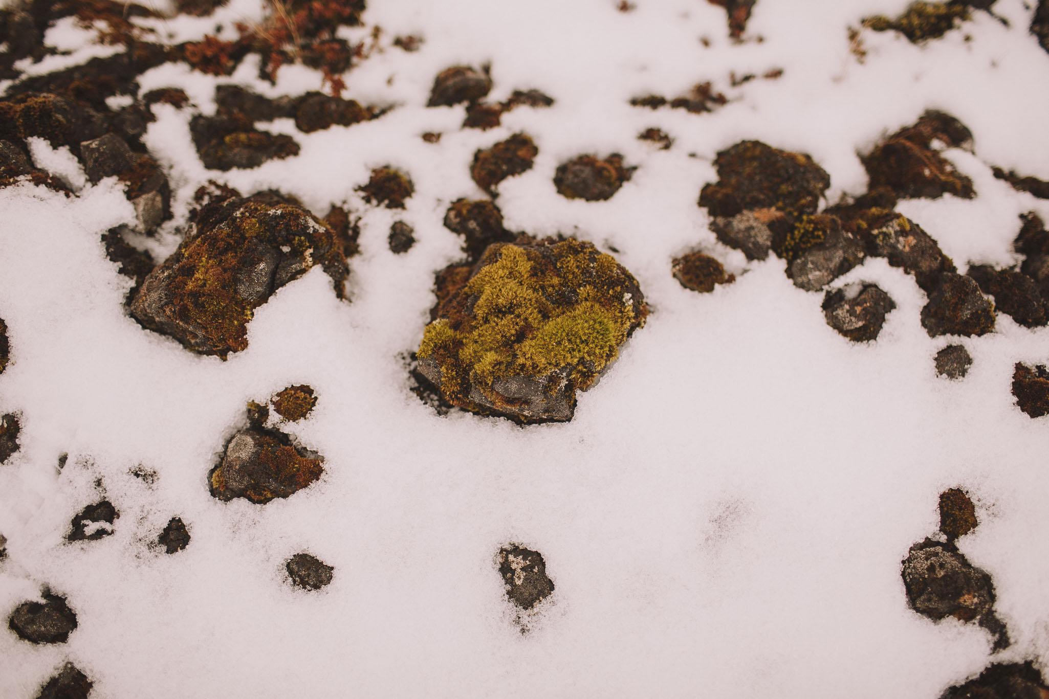 Road-trip-Islande-Iceland-Voyage-Travel-Portrait-Jérémy-Boyer-Geysir-Geysers-Horse-snow-ice-Gullfoss-11.jpg