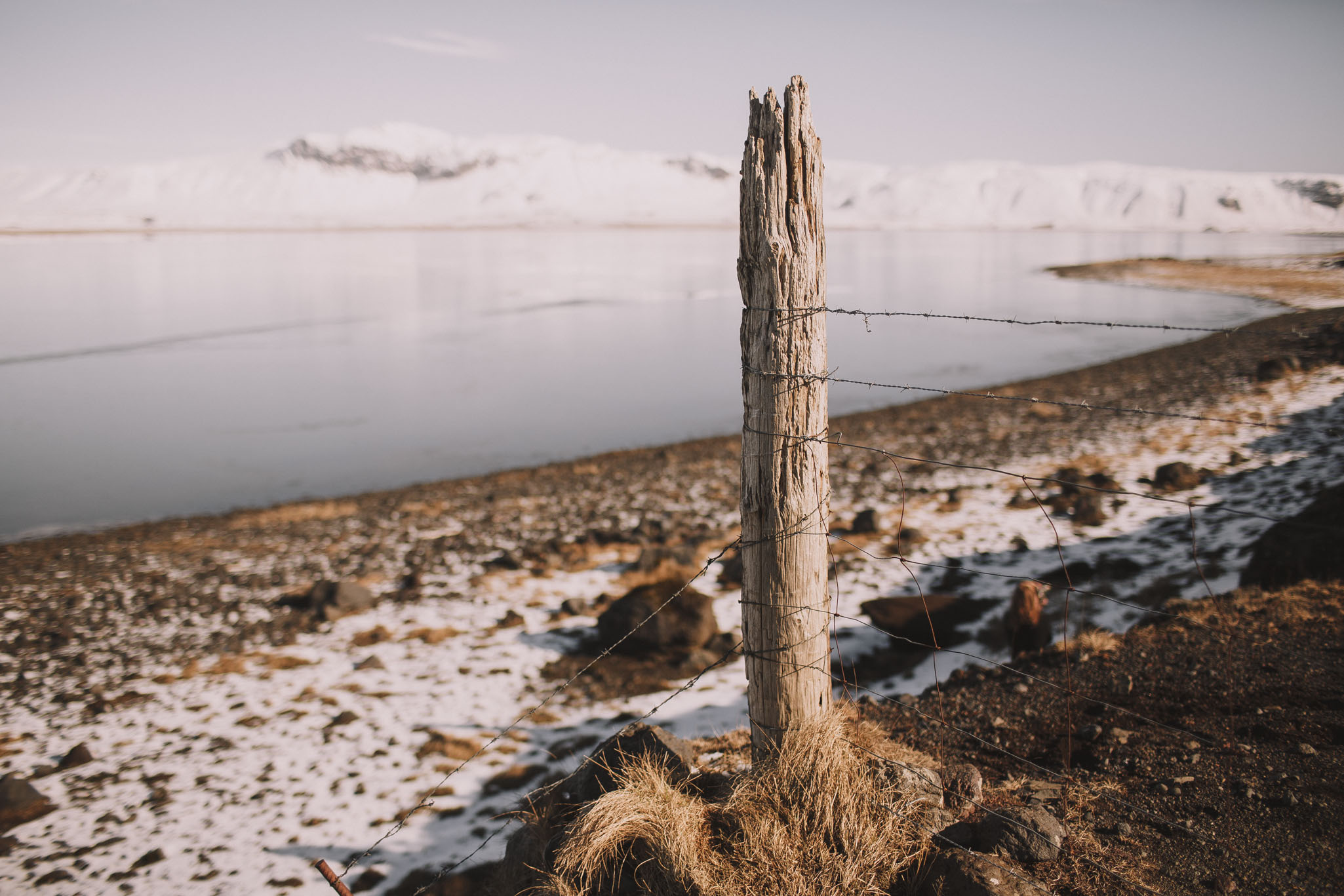 Road-trip-Islande-Iceland-Voyage-Travel-Portrait-Jérémy-Boyer-Sunny-day-between-Skogafoss-Dyrholaey-2.jpg