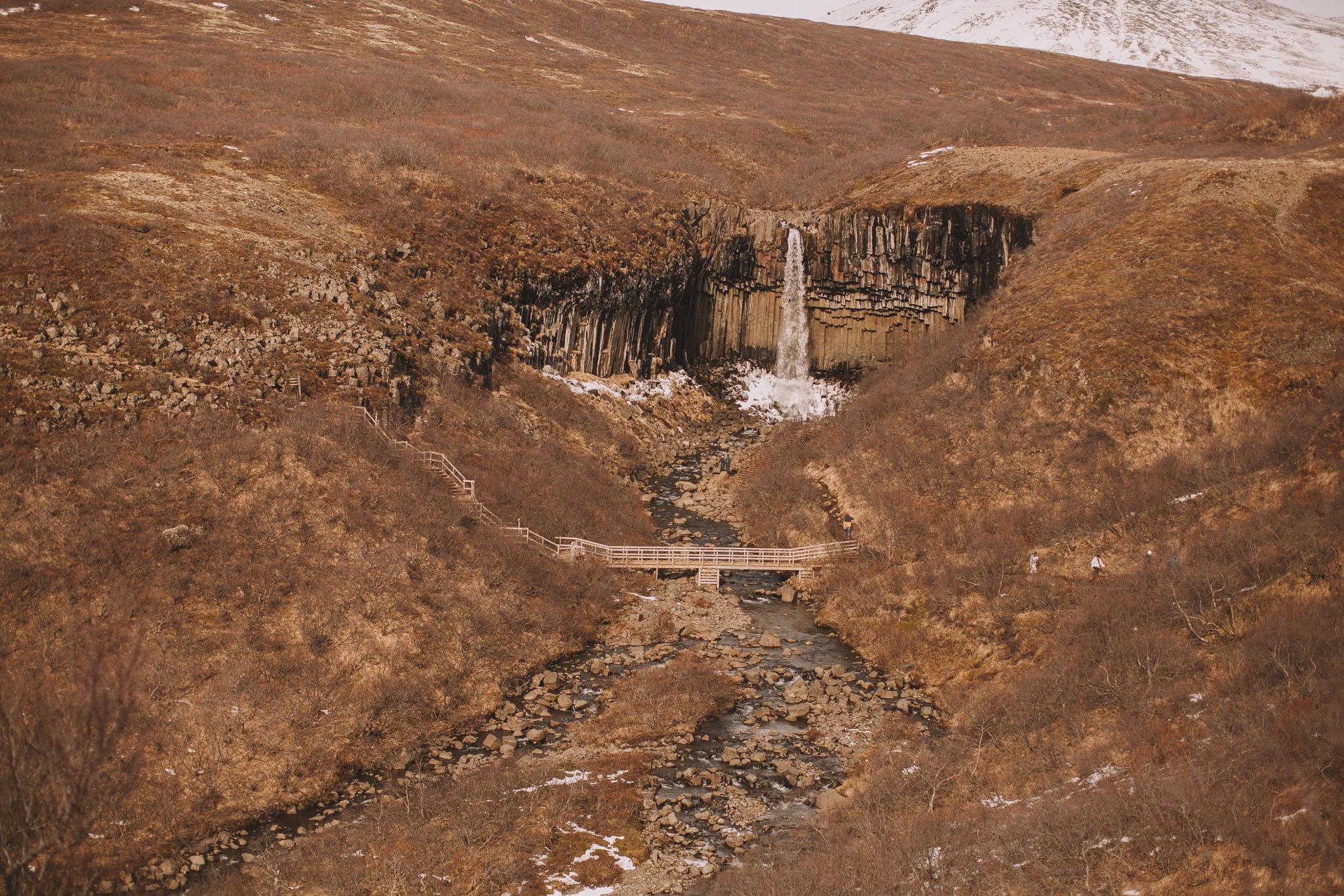 Road-trip-Islande-Iceland-Voyage-Travel-Portrait-Jérémy-Boyer-Svartifoss-19.jpg