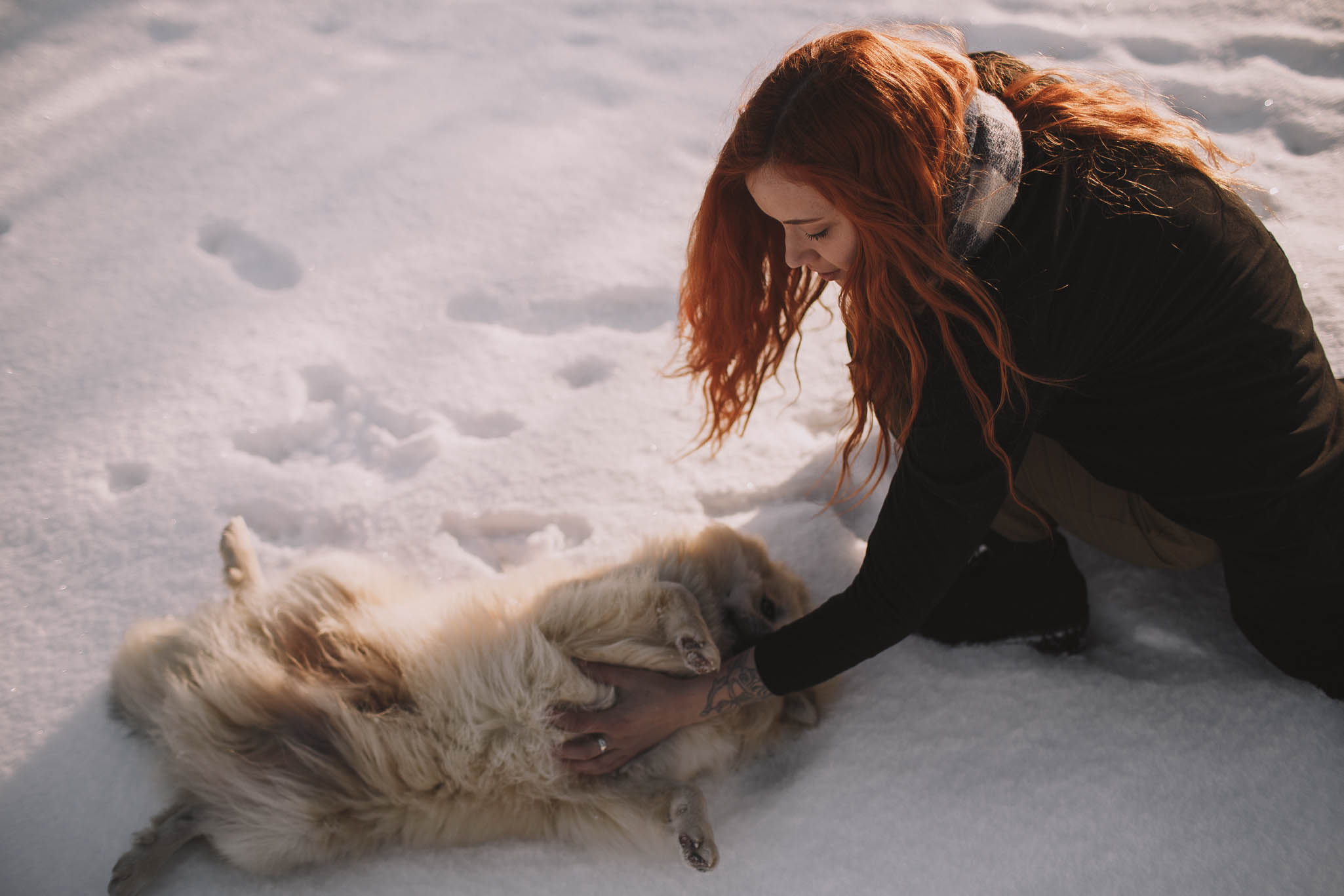 Road-trip-Islande-Iceland-Voyage-Travel-Portrait-Jérémy-Boyer-Sunny-day-dog-snow-14.jpg
