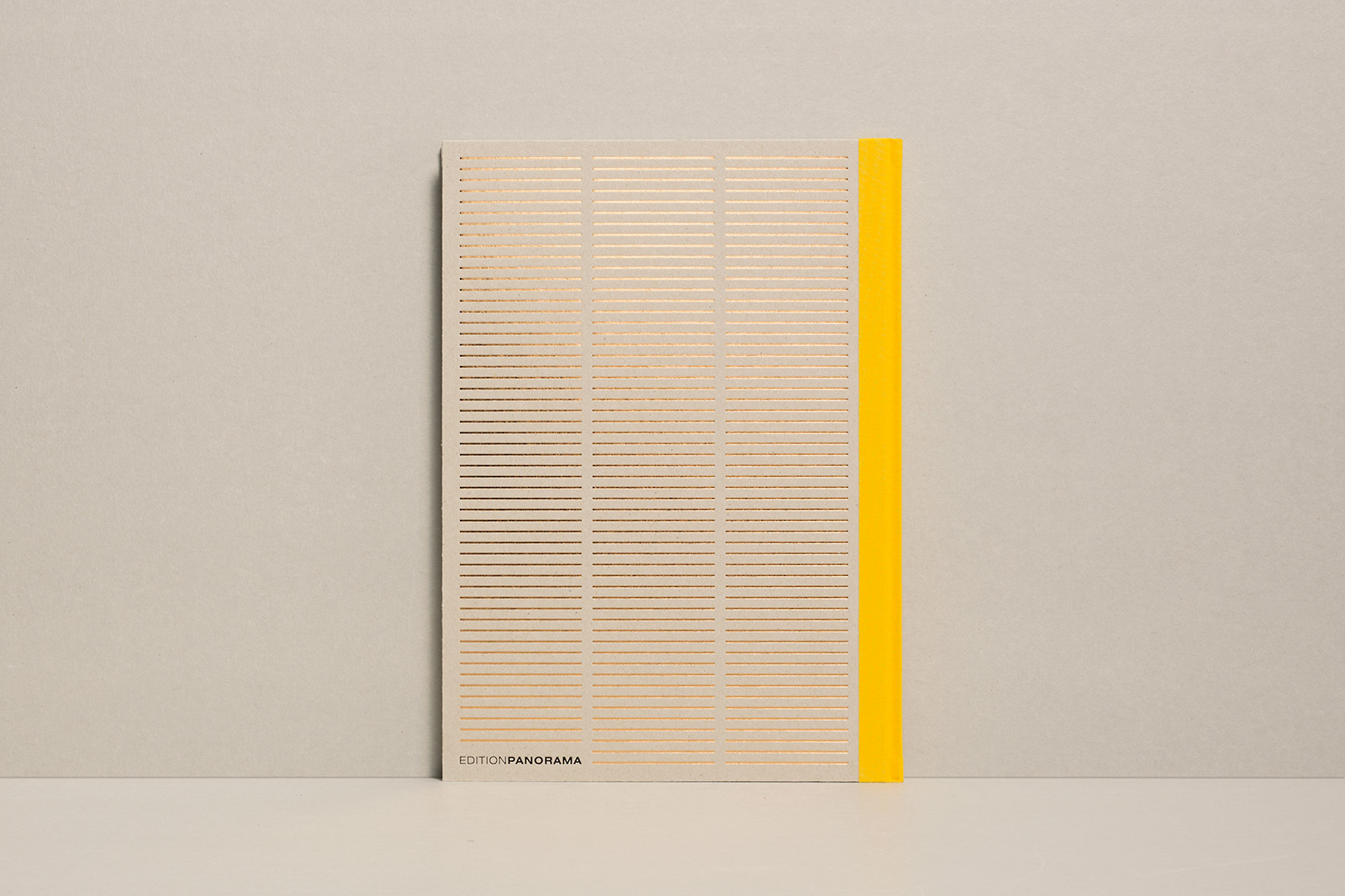 Buch-Repro1108.jpg